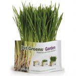 Organic Wheat Grass-Pet Greens Certified