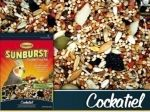 25lb Tiel Sunburst Gourmet Mix-Higgins