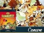 25lb Conure Sunburst Gourmet Mix-Higgins