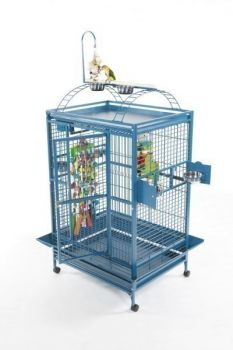 36 x 28 X-Lg Powder Coated Play Top A&E Cage