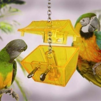 Parrots Treasure-Nature's Instinct