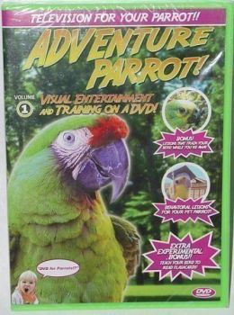 Feathered Phonics DVD Adventure Parrot