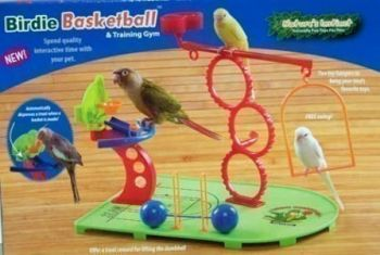 Birdie Basketball Gym-Nature's Instinct