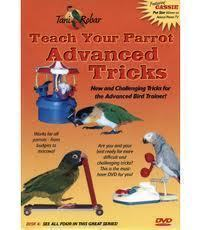 Tani Robar -Teach Your Parrot Advanced Tricks