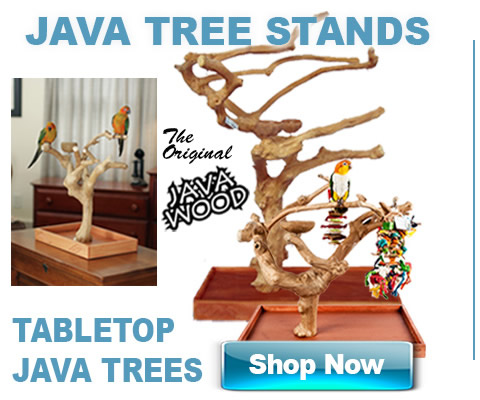 Java trees stands for birds