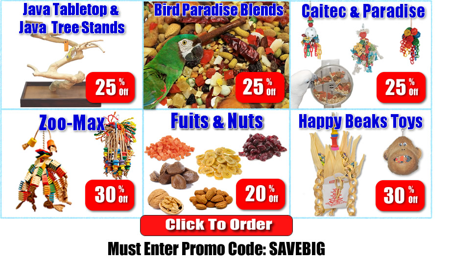 sale-parrot-toys-food-stands-1.jpg