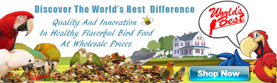 Worlds best bird food link