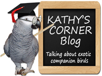 Kathy's Corner blog about companion birds