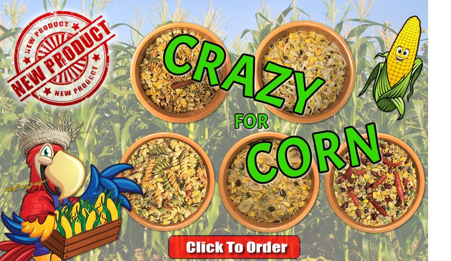 crazy-for-corn-homepage-cookable.jpg