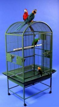 32 x 23 Powder Coated Dome Top AE Cage