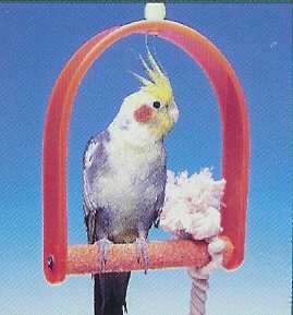Md Swing w/ Pedicure Perch-Penn Plax