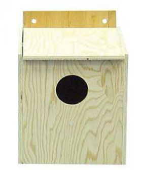 Cockatiel Nesting Box