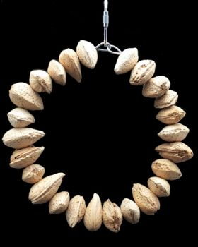 Almond Ring-Happy Beaks Made In USA