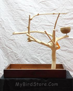 Sm Tabletop Java Tree Bird Stand
