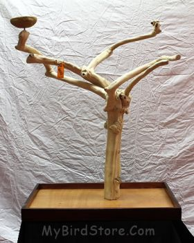 X-Large Tabletop Java Tree Bird Stand