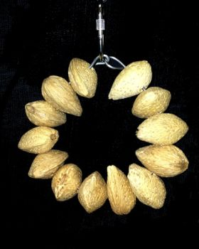 Sm Almond Ring-Happy Beaks Made In USA
