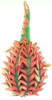 Lg Pineapple Foraging Toy-Planet Pleasures