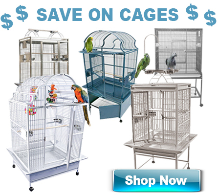 Parrot cages link