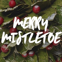 Merry Mistletoe Fragrance Oil *