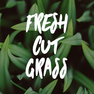 Fresh Cut Grass Fragrance Oil *