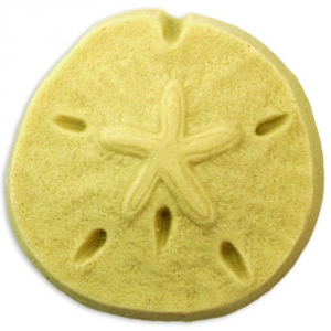 Sand Dollar Soap Mold